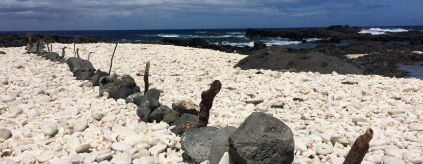 Kaena Point State Park hawaii